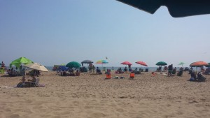 plaja-carousel